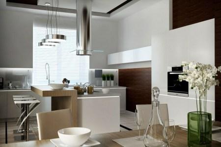 10 contemporary kitchen