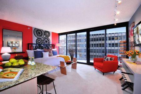 bold color wall studio apartment
