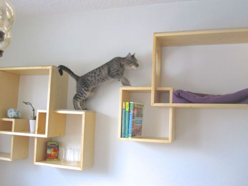 Medium Of Modern Wall Mounted Bookshelves