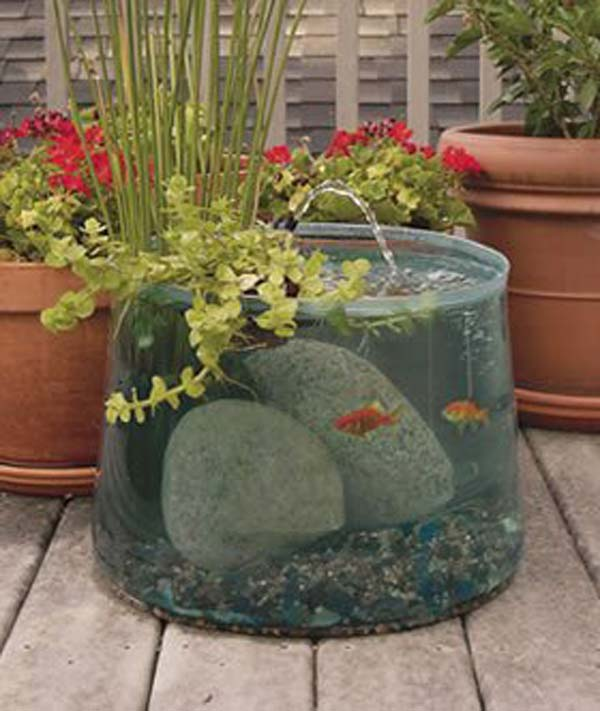Small fish tank maintenance ideas this item was filled for Small outdoor fish tank