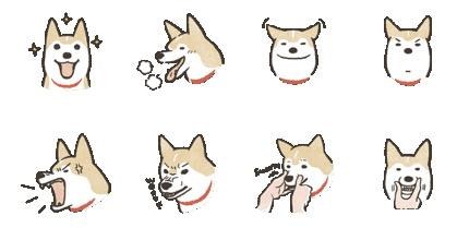 免費原創貼圖-柴犬