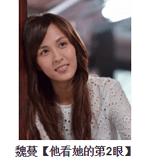 2015華劇大賞 直播、轉播、入圍名單、得獎名單 50