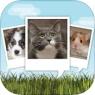 ios限免、限時免費軟體app遊戲-My Talking Pet 3