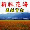 2017新社花海節kikinote (2)