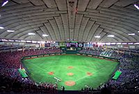 200px-Tokyo_Dome_2007-1