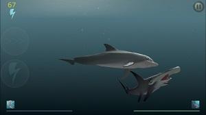 Shark Eaters-3