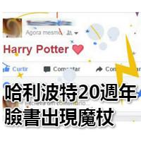 臉書 哈利波特 (4)
