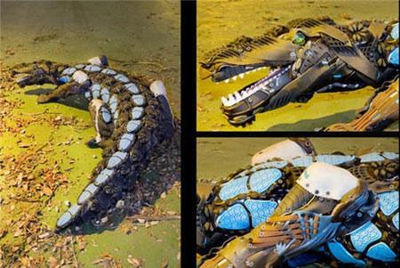 Files Pic 2007-11 30 14