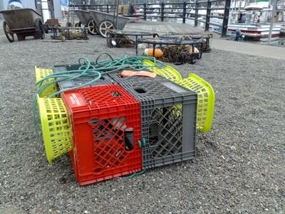 Bodega Crabbing