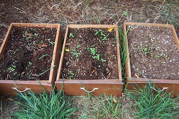 drawerplanters.jpg