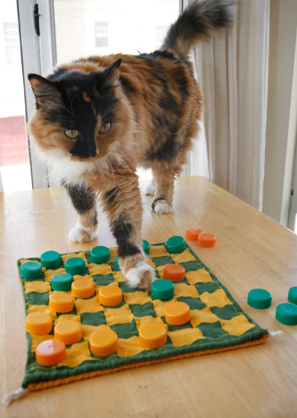 checkin_in_tiffany_checkers-plus-cat.jpg