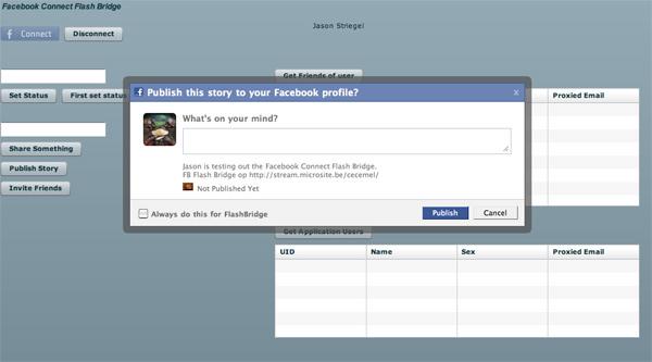 fbflash_20090213.jpg