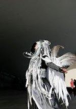 mf_fashion_wings.jpg