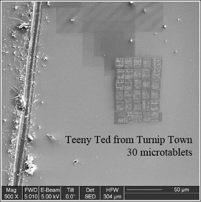 teeny_ted_tablets.jpg