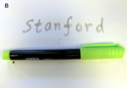 stanford CNT marker.jpg
