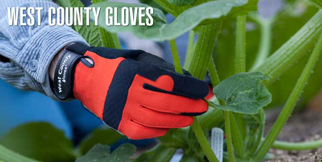 westcountygloves.jpg