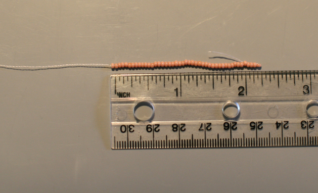 Tasselearrings Image3 Ruler