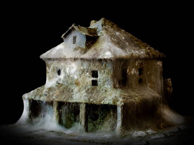 molding_houses.jpg