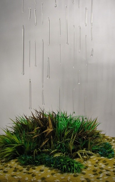 glass rain silk grass.JPG