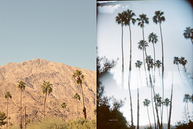 AM_Issue2_PalmSprings-4.jpg