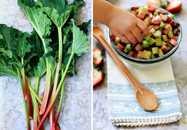 Kitchen101 Spring Rhubarb