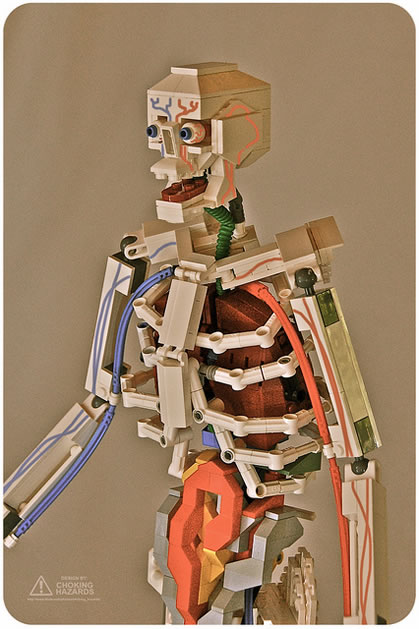 lego_anatomy_skeleton.jpg