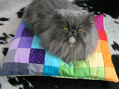 best_of_quilting_color_spectrum_pet_bed.jpg