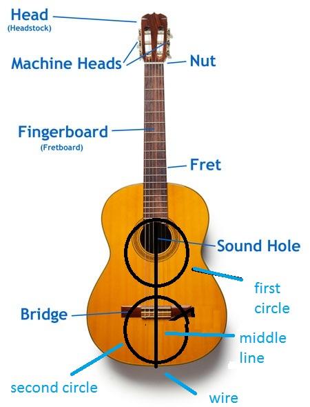Classical guitar anatomy
