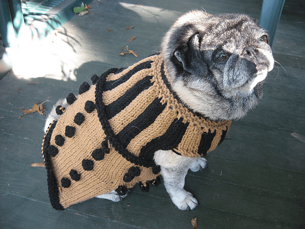 Knitting Pattern Dog Coat Pug : Knit Dalek Dog Sweater Pattern Make:
