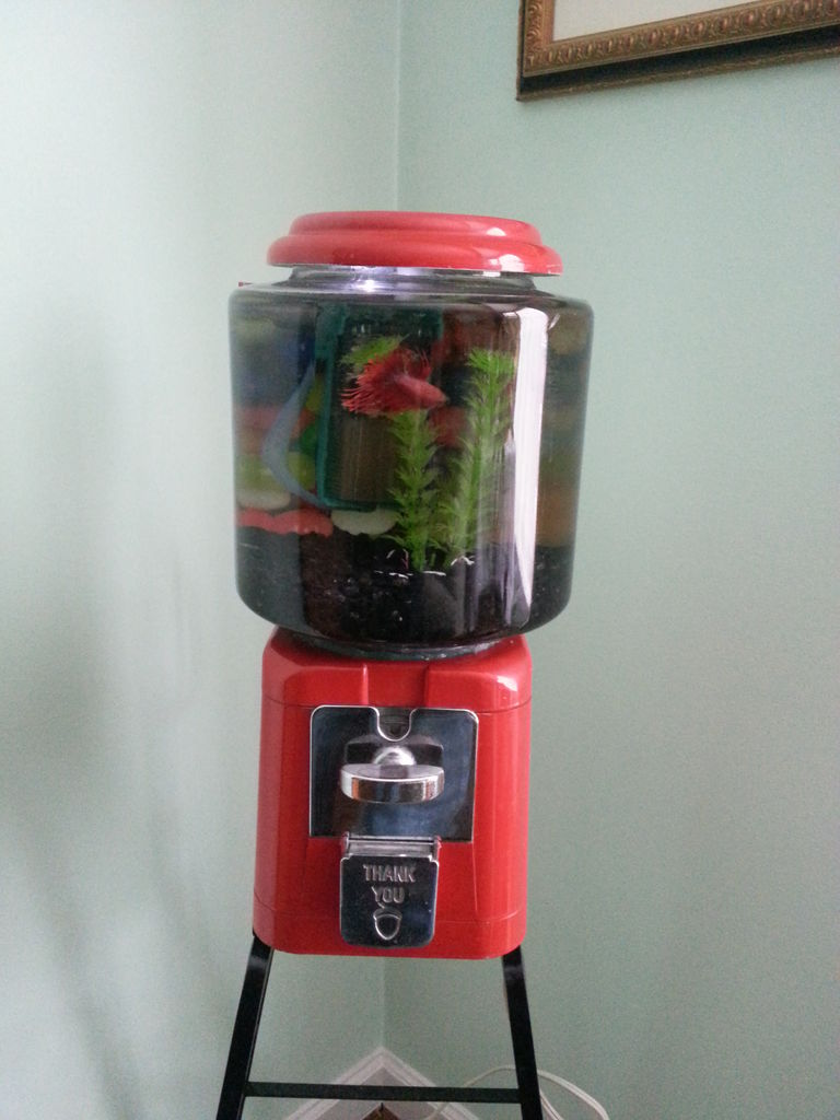 gumball-machine-fish-tank-1