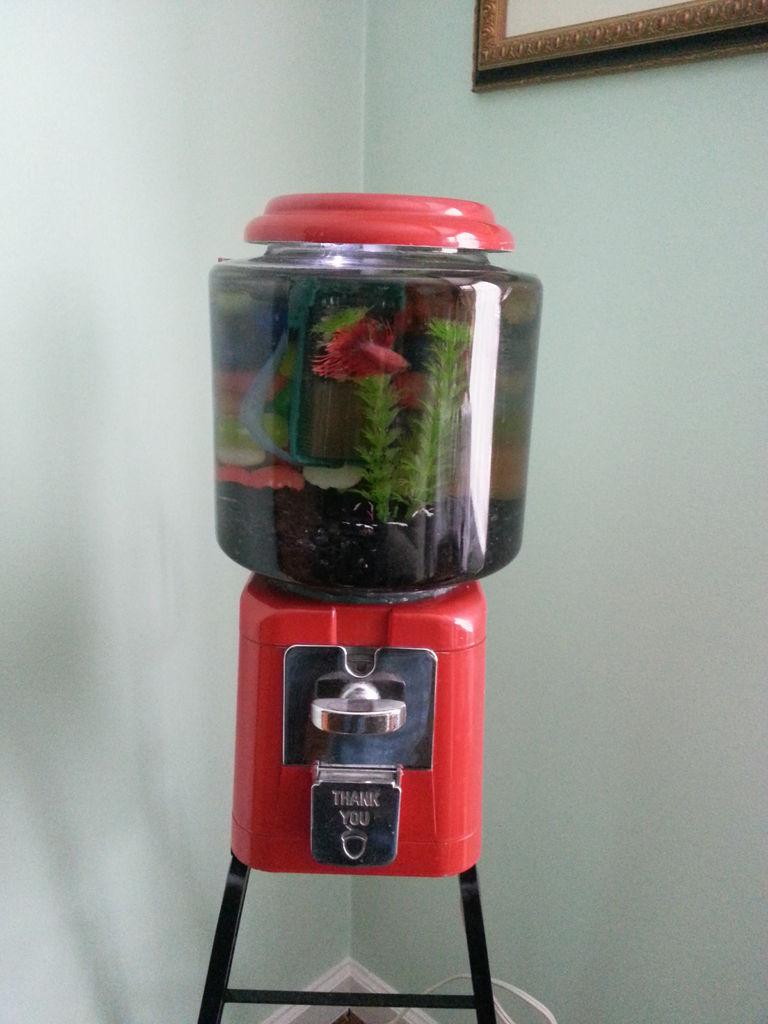 gumball-machine-fish-tank-1
