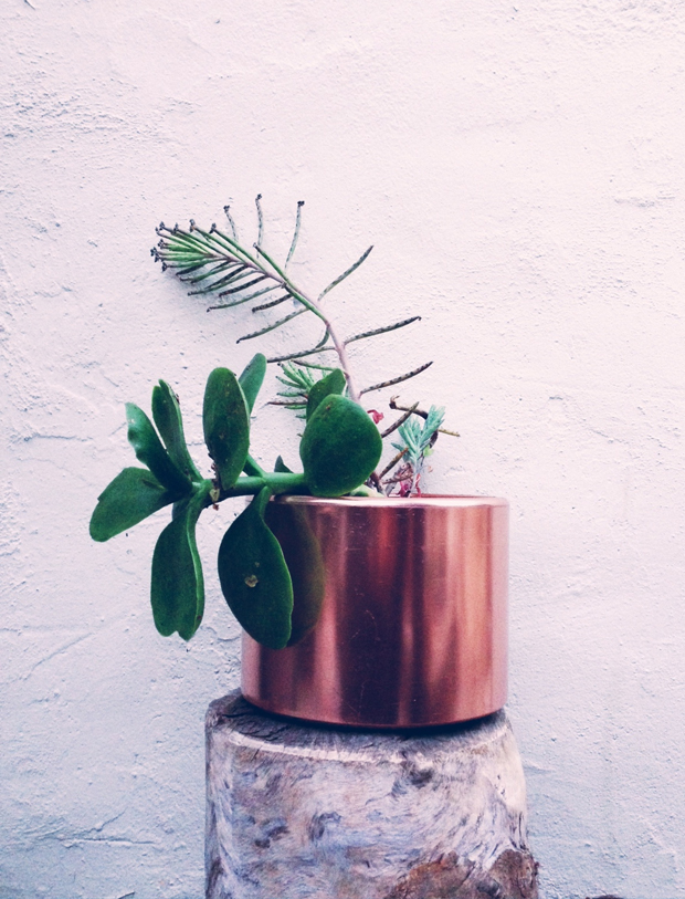 copper-planter-by-justina-blakeney