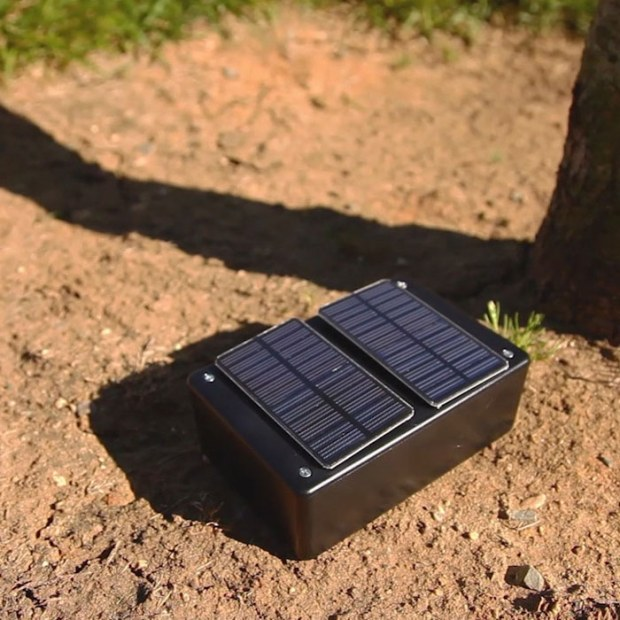 solar cricket _ square