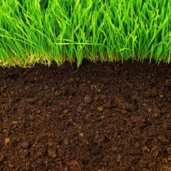 A 1 Screened Topsoil Opening Hours 1847 Manning Rd Tecumseh On