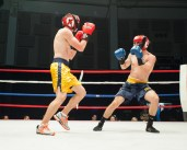Bengal Bouts: Opening Night, By Michael Yu