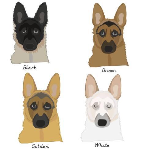 Medium Of German Dog Names