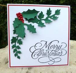 Interesting Red Project Ideas Cards Ideas Ks1 Cards Ideas 2017 Berries Handmade Tags Green Holly