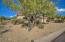 16481 N 103RD Place, Scottsdale, AZ 85255