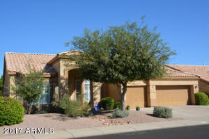 Easy care front yard with big shade trees