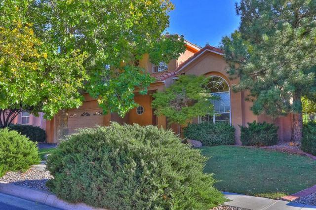 11904 CARIBOU Avenue NE, Albuquerque, NM 87111