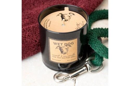 Medium Of Wet Dog Smell