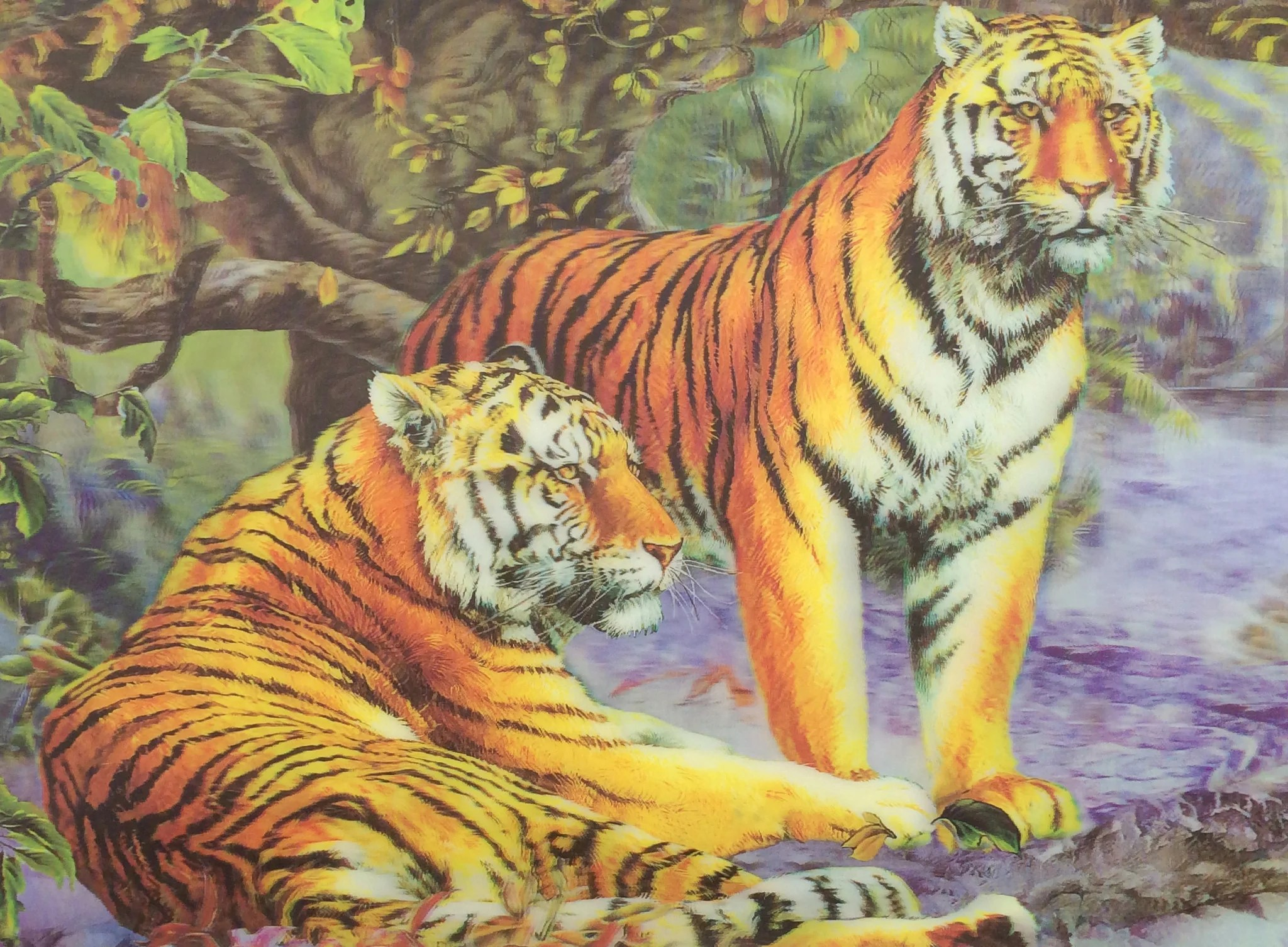 T 10 Yellow Tiger Couple 3d Picture 3dddpictures Com