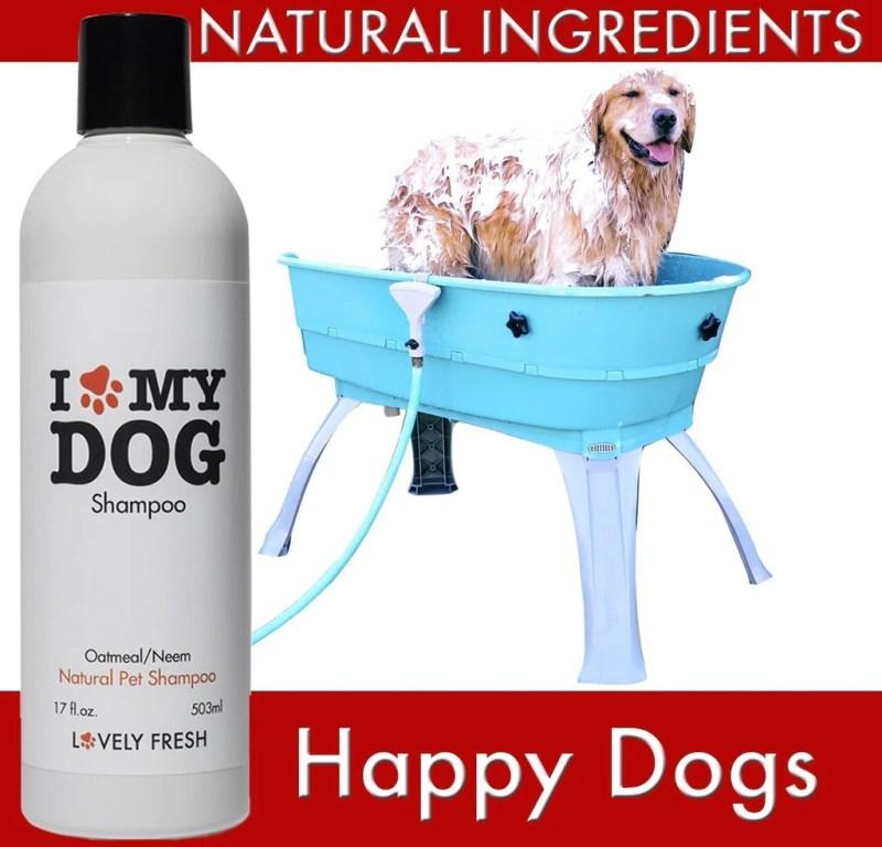 Large Of How Often Should I Wash My Dog