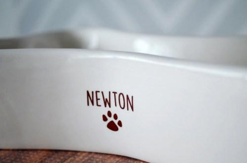 Medium Of Personalized Dog Bowls