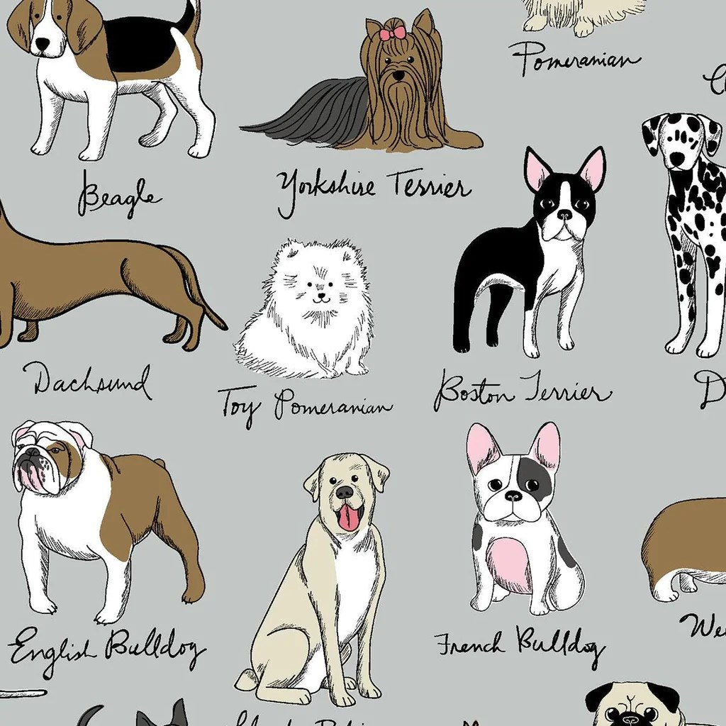 Fullsize Of French Dog Breeds