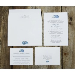 Sophisticated Mussel Shells Wedding Invitation Mussel Shells Wedding Invitation Cards Wedding Invitation Sites Wedding Invitation Suite Sample