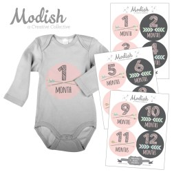 Graceful Baby Stickers Mock Up Month By Month Pink Tribal Arrows 5e69c8e2 6f3f 4bb3 8e20 2b1f4b5cc76f 1024x1024 Free Baby Month Milestone Stickers Digital Baby Month Stickers