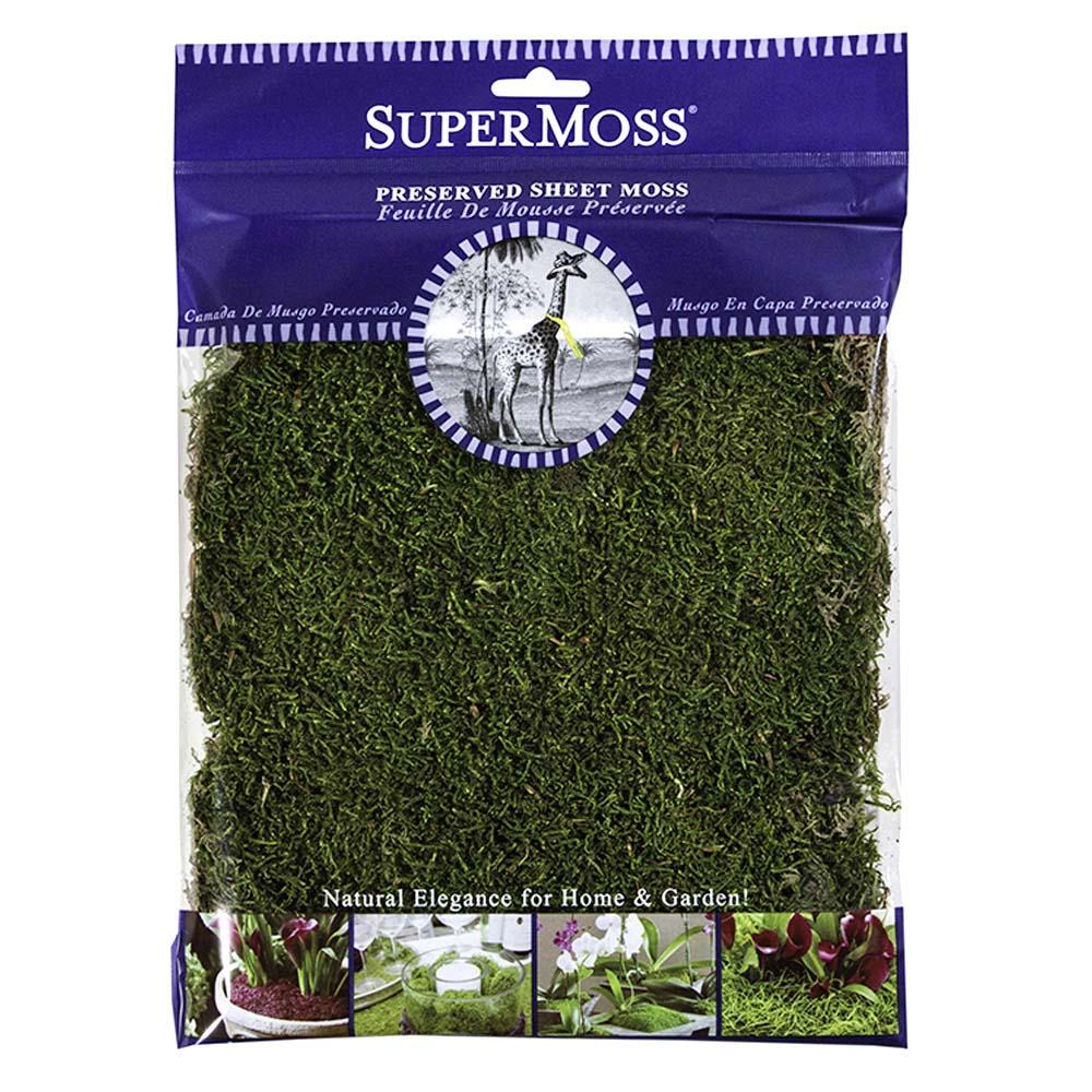 Fullsize Of Canada Green Grass Seed