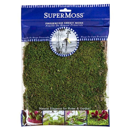 Medium Of Canada Green Grass Seed