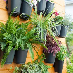 Small Of Vertical Gardening Kit